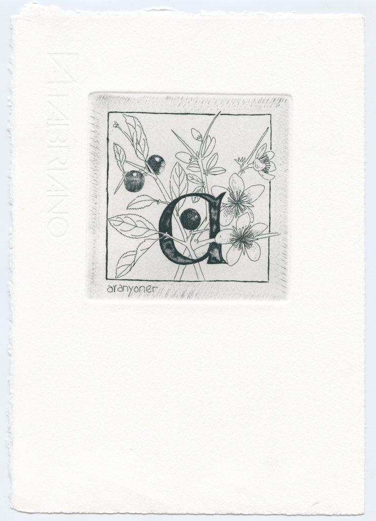 abecedari008